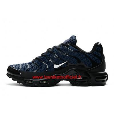 chaussure nike tn bleu